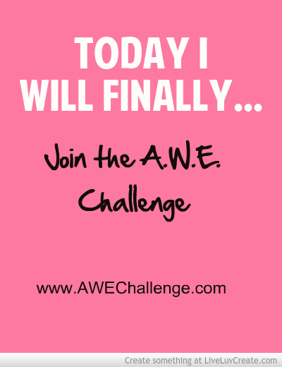 SystemSavvy Consulting join awe challenge