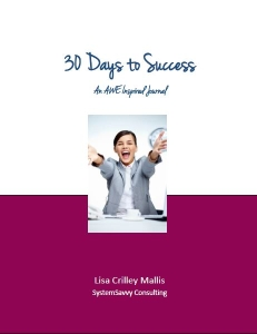 Supplementary AWE Challenge Workbook