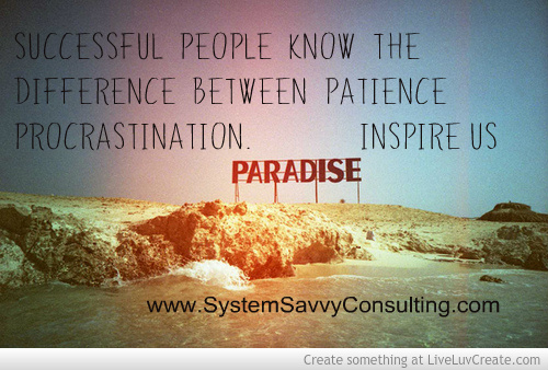 SystemSavvy Consulting coaching